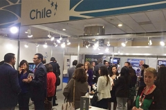 stand-chile