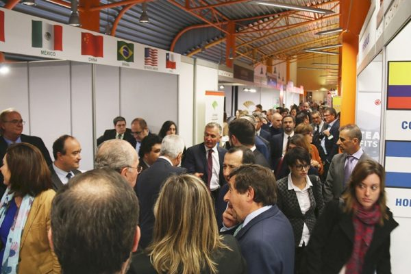IMEX-Andalucía, el trampolín para las empresas andaluzas que buscan internacionalizarse
